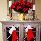 Holiday Indoor Display by Cynthia48