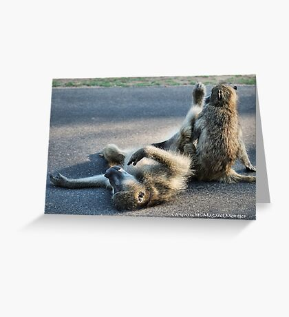 CHACMA BABOON – Papio ursinus - TOTALLY EXHAUSTED ! Greeting Card