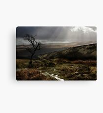 DARTMOOR Canvas Print