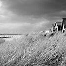 Chelsea Beach by Christine Wilson