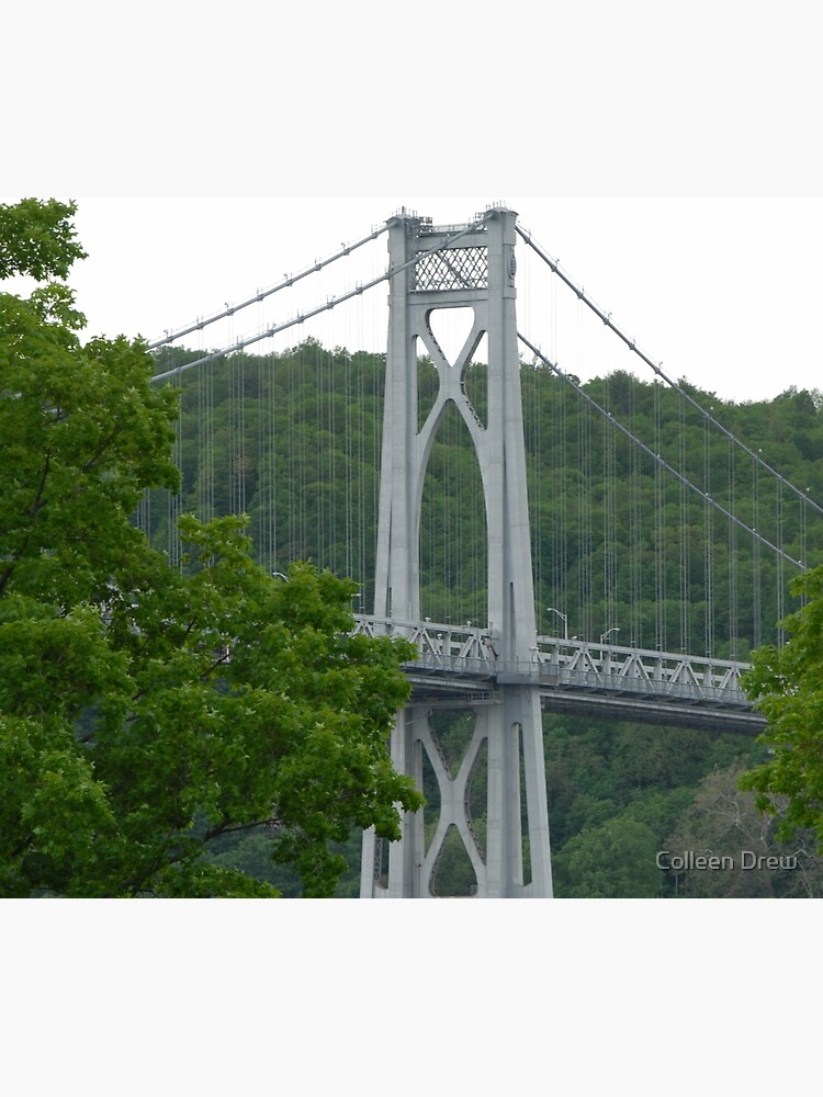 Mid Hudson Bridge by colgdrew