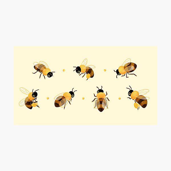 Honey bees Photographic Print