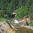 Montana Stream II by D R Moore