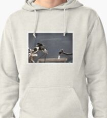 the creation of adam (with bikes) Pullover Hoodie