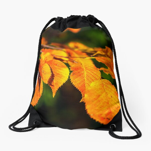 Autumn Leaves 2 Drawstring Bag