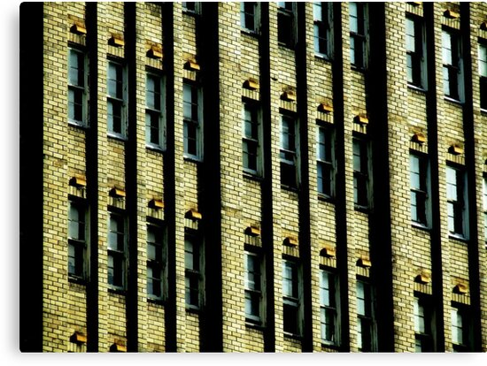 Moving Windows by Paul Todd