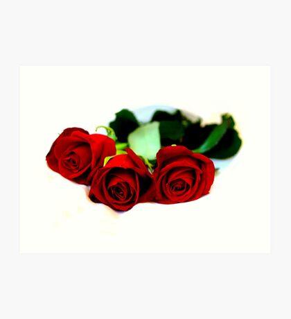 The rose speaks of Love silently...... Art Print