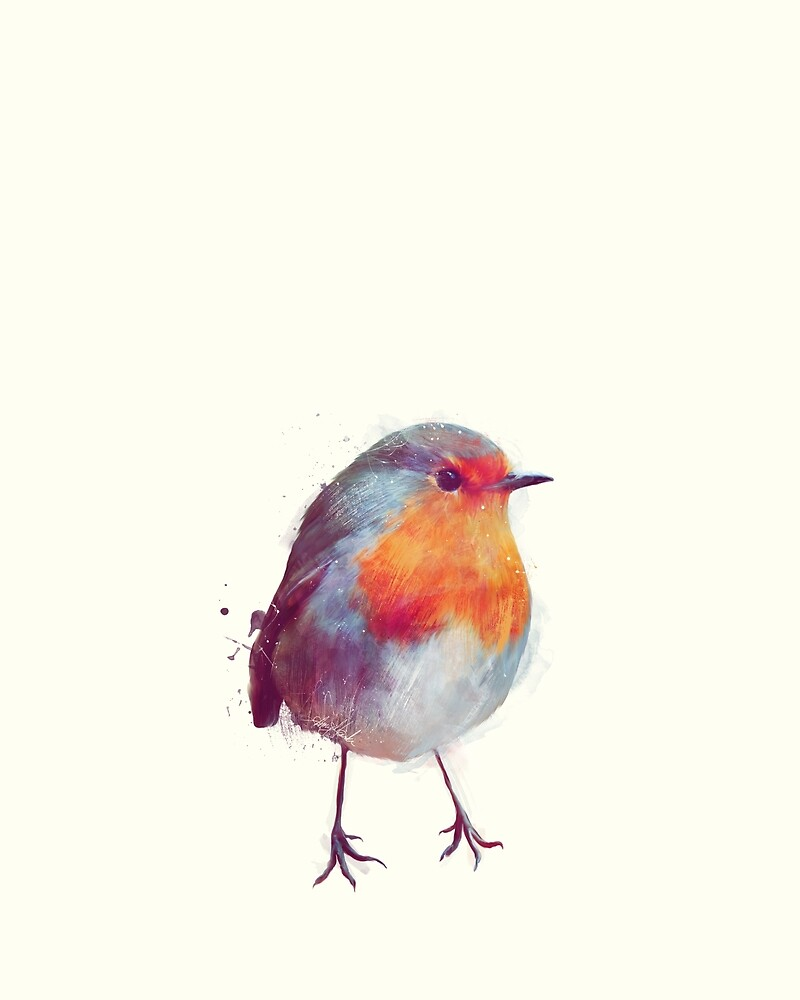 Winter Robin by Amy Hamilton