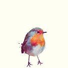 Winter Robin von Amy Hamilton