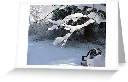 Winter is Here  by Elaine Bawden