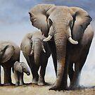 The Art of Wildlife by Eric Shepherd by eric shepherd