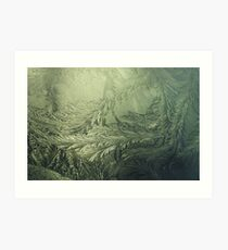 Fern stems in ice.. Art Print