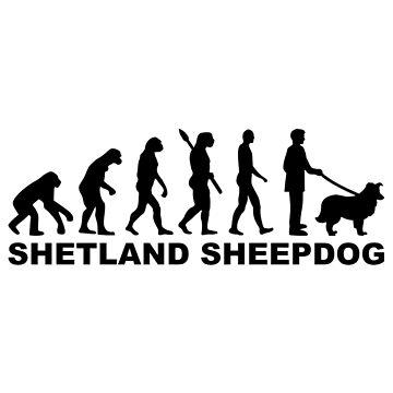 Shetland Sheepdog evolution by Designzz