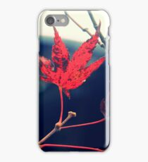 A Roof to Fall iPhone Case/Skin