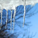 Winter Thaw by ECH52