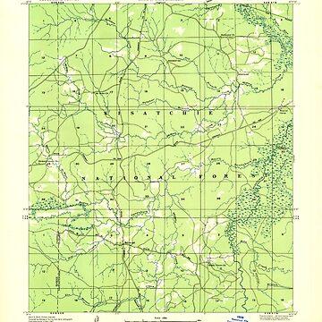 USGS TOPO Map Louisiana LA Bellwood 333654 1937 31680 by wetdryvac