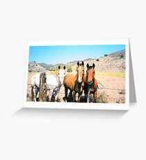 Three Amigos Greeting Card