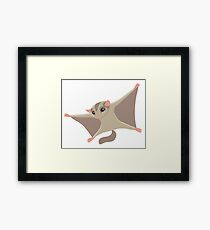 Crazy flying Sugar Glider Framed Print
