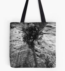 Paria Canyon Tote Bag