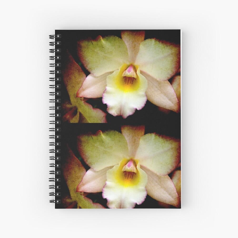 Textured Lady Cuaderno de espiral