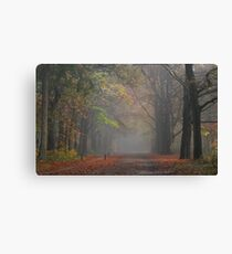 Just a little autumnal flashback Canvas Print