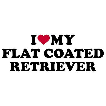 I love my Flat Coated Retriever by Designzz