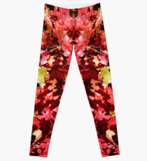 Autumn Oak Leaves Leggings