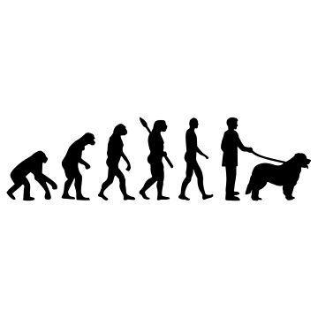 Leonberger evolution by Designzz
