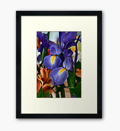 Hope for Spring Framed Print