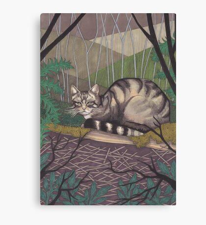 Highland Tiger Canvas Print