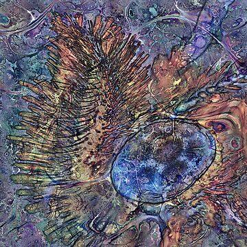 Lepidoptera 10 by RichardMaier