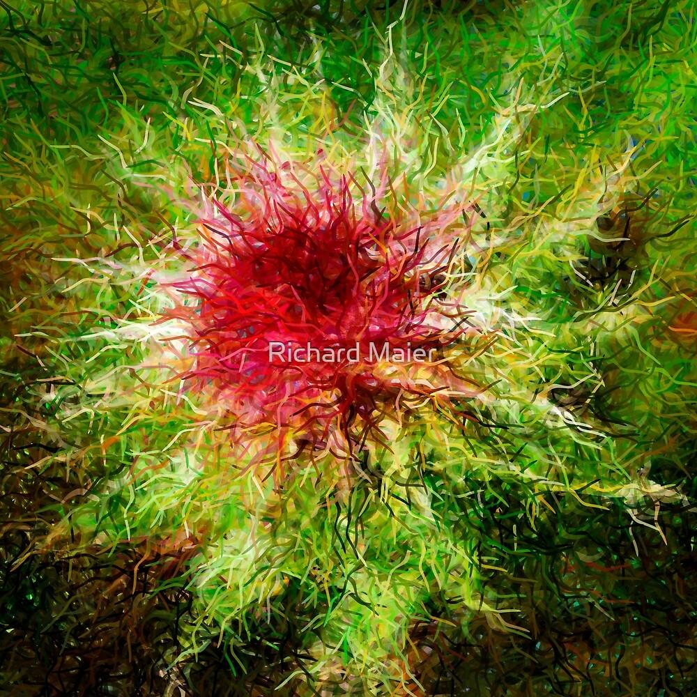 Dendrification 1 by Richard Maier