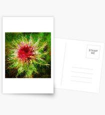 Dendrification 1 Postcards