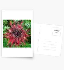 Dendrification 3 Postcards