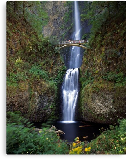 Multnomah Falls by Mike Norton