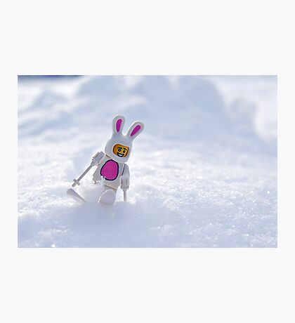 Snow Bunny Photographic Print
