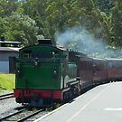 Puffing Billy pulls in to Belgrave Station, Victoria by BronReid