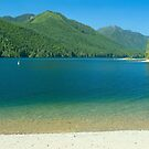 Lake Cushman Beach in Summer by Stacey Lynn Payne