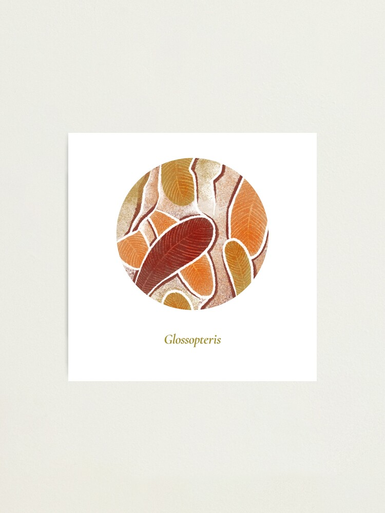 Alternate view of The Circles of Life: Glossopteris Photographic Print