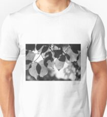 Backlit Leaves Black & White Graphic T-Shirt