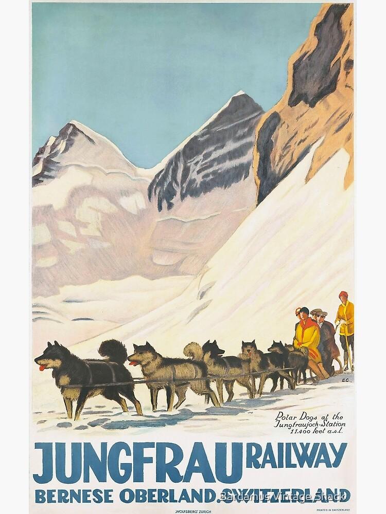 Jungfrau Huskies by SamKovac