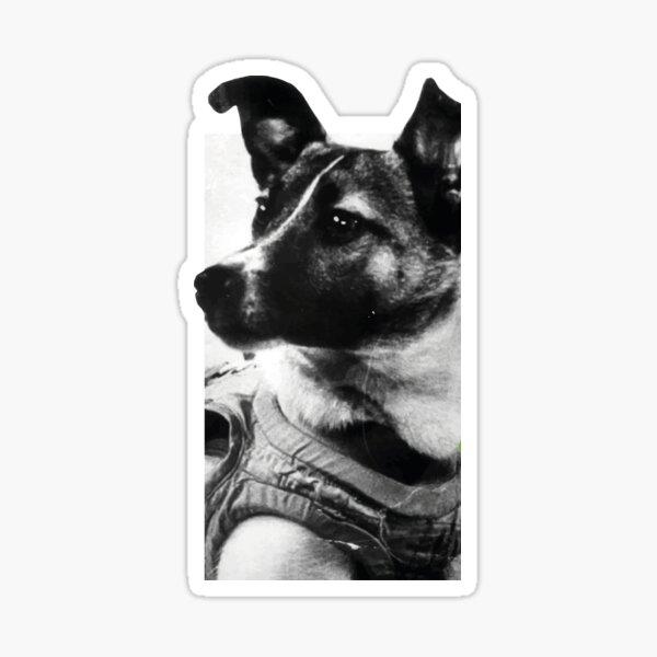 Laika Лайка Sticker