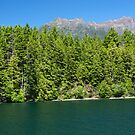 Lake Cushman and Mount Elinor in Summer by Stacey Lynn Payne