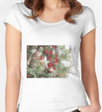 Merry Women's Fitted Scoop T-Shirt