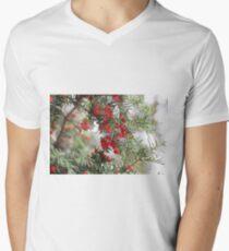 Merry Men's V-Neck T-Shirt
