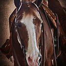 Handsome by Linda Gregory