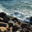 Scenes from Cali V by PJS15204
