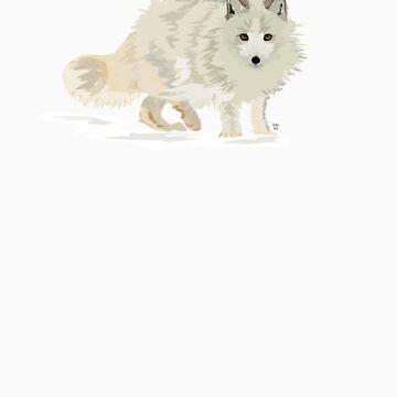 Arctic Fox vector by firefoxx