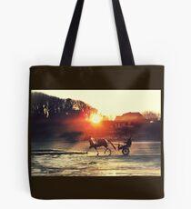 Pony und Falle am Bettystown Strand Tasche