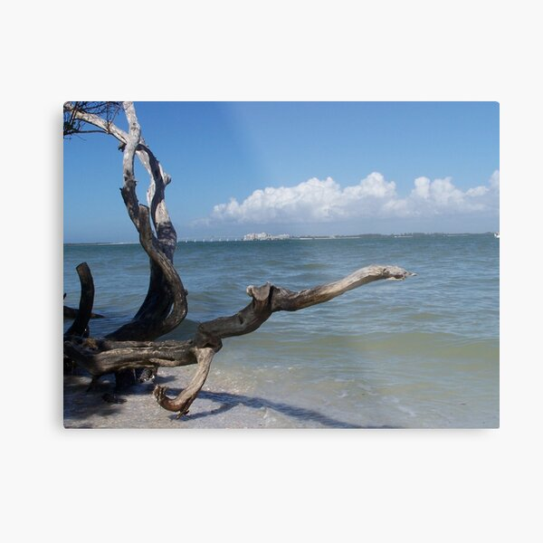 Bowman Beach, Sanibel Island Metal Print